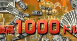 ワイルドジャングルカジノで今月最高1000ドルのキャッシュバックボーナス2